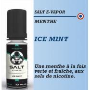 Salt E-Vapor - ICE MINT - 10ml